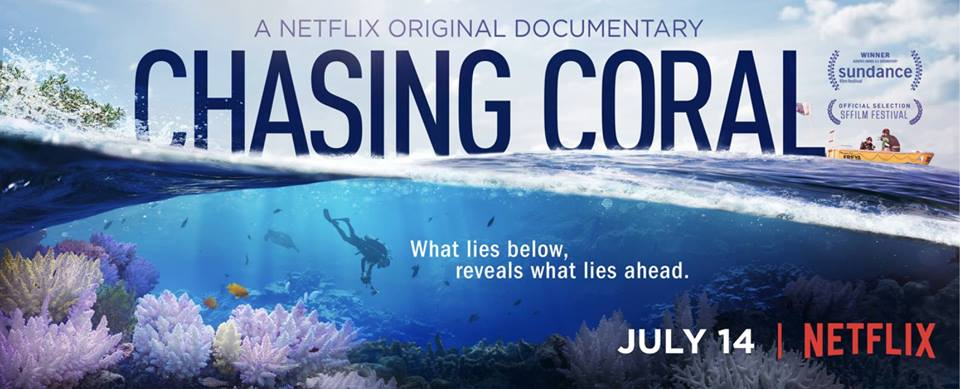 Image result for Chasing Coral